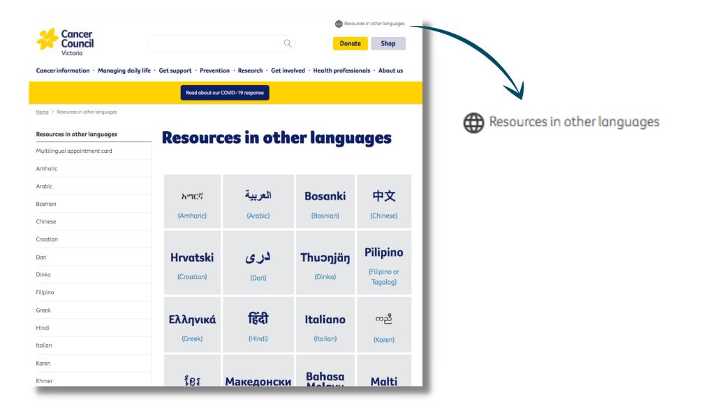 Ethnolink-Australian-health-organisation-website-translation