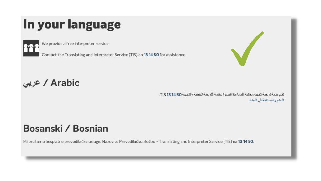 Ethnolink-website-translation-Bosnian-other-language